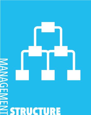 management-structure